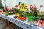 Ярмарка-выставка Овощные страсти в День строителя - 2013. Фото_2