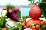 Ярмарка-выставка Овощные страсти в День строителя - 2013. Фото_4