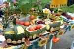 Ярмарка-выставка Овощные страсти в День строителя - 2013. Фото_6