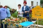 Ярмарка-выставка Овощные страсти в День строителя - 2013. Фото_7