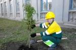 Экологический субботник - цемзавод